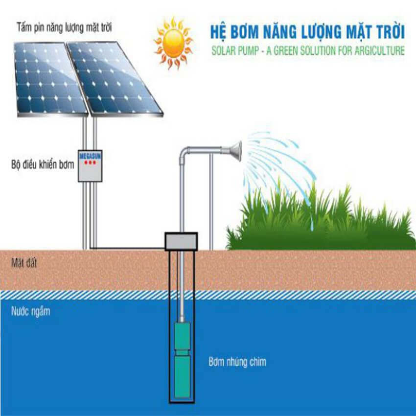 Hệ thống bơm trực tiếp từ nắng công suất từ 2~3HP